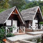 Madagascar : la destination parfaite pour les vacances